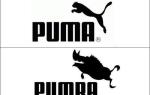 Как правильно выбрать кроссовки Puma