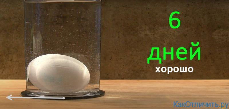 Свежее яйцо тонет в воде