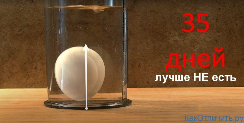 Несвежее яйцо стремится вверх в воде